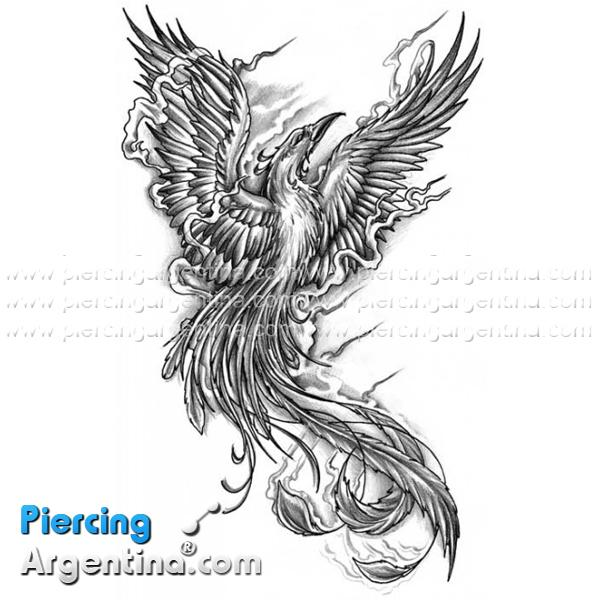 Diseño Tatoo Ave Fenix - SFB